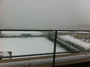 snow0214-1
