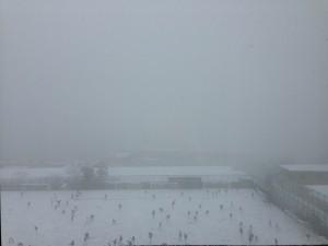 snow0214-2